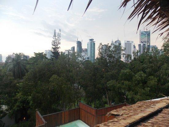 Villa Samadhi: View