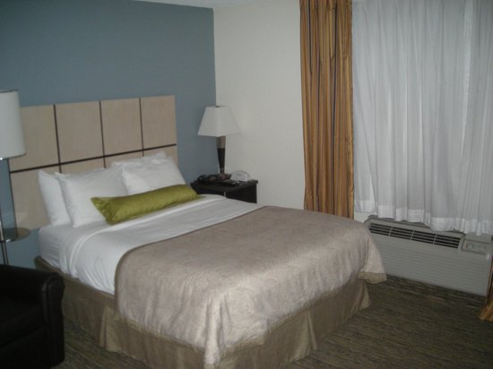 Candlewood Suites Clearwater : Queen bed