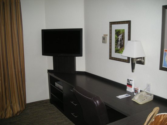 Candlewood Suites Clearwater : TV, desk