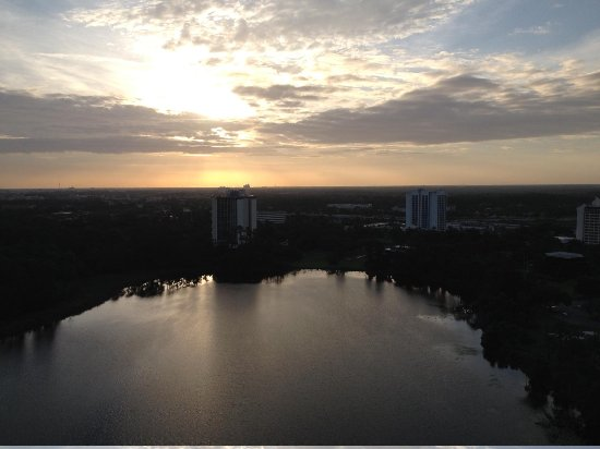 Hilton Orlando Buena Vista Palace Disney Springs : Vista desde el Hotel amaneciendo
