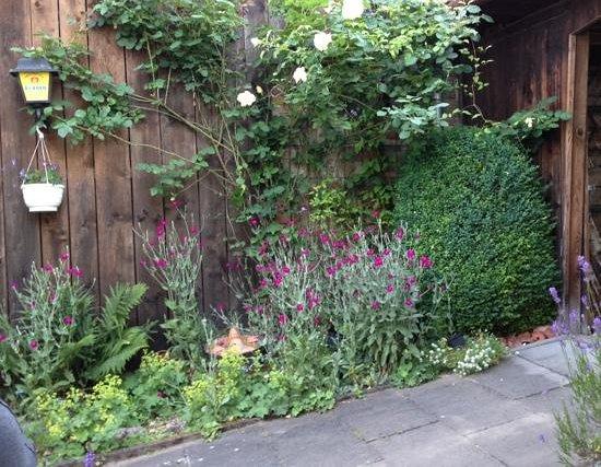 Pflug Neumuehl: Aussicht im Garten