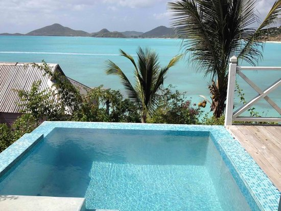 Cocobay Resort : View of our plunge pool