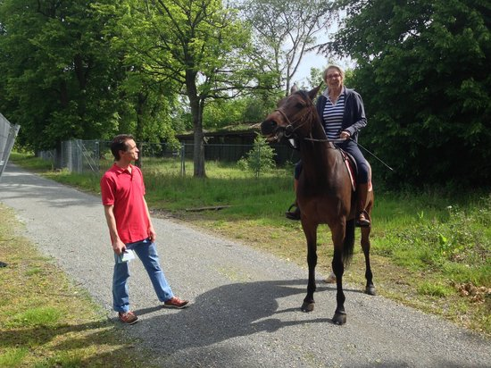 B&B Hippo-Droom : Horseback riding in Sonian Forest.