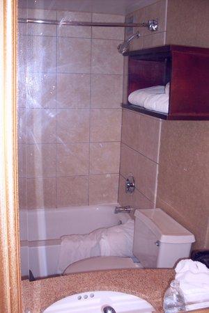 Hilton Tampa Airport Westshore: Munchkinland bathroom in mirror reflection