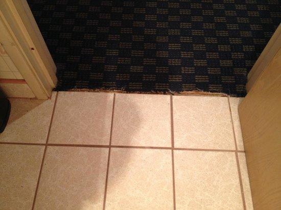 Comfort Inn & Suites Sea-Tac Airport : Carpet ratty between bathroom and hallway
