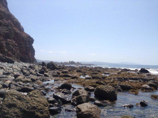 Dana Point, CA: LOW TIDE, walk carefully . Fun