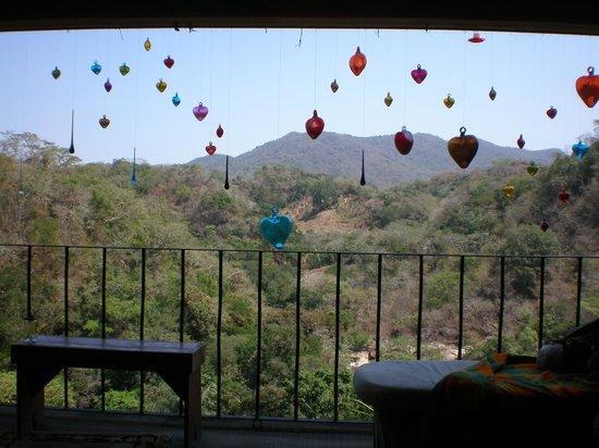 Vallarta Botanical Gardens: View from Visitor Center