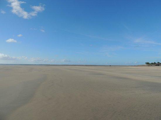 Praia De Maracaipe : Caminado por la playa