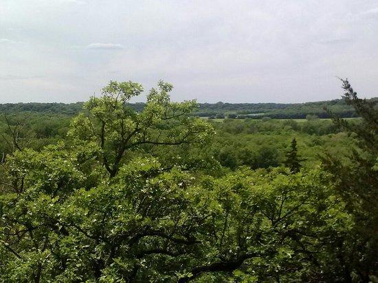 Flandrau State Park: Overlook