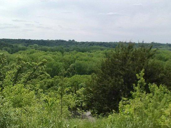 Flandrau State Park: Overlook of Minnesota River Valley