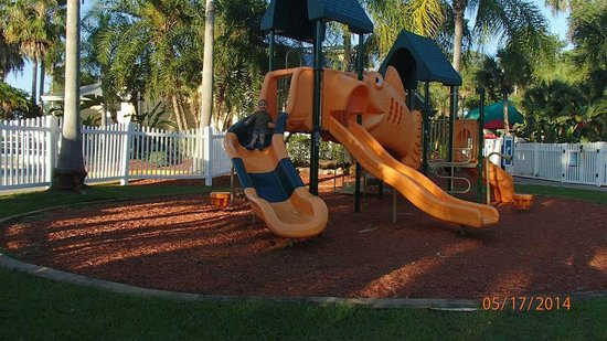 Tropical Palms Resort and Campground: playground