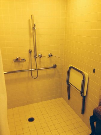 Stamford Plaza Brisbane: Wheelchair access room shower