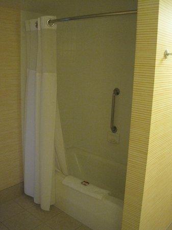 Tropicana Las Vegas - A DoubleTree by Hilton Hotel : Bathroom tub/shower