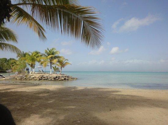 Canella Beach Hotel-Restaurant : la plage