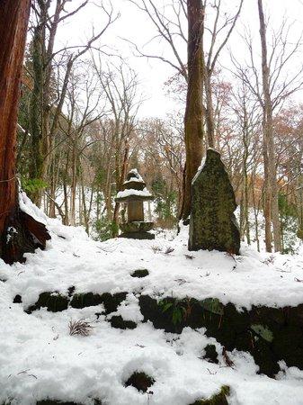Togakushi Shrine Okusha: Path to Okusha shrine