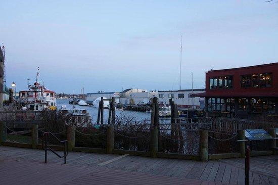 DiMillo's Old Port Marina: Boats