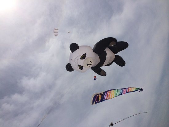 Jockey's Ridge State Park: Kite festival