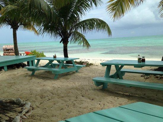 da Conch Shack: Paradise Found