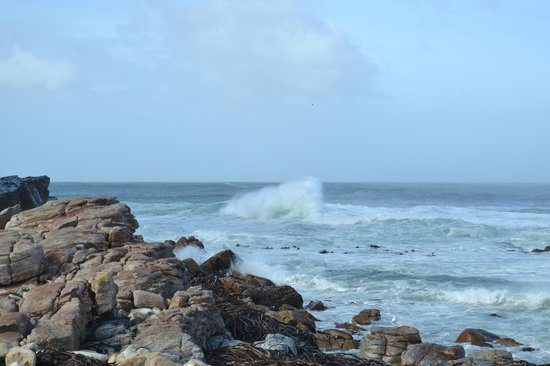 Cape of Good Hope - May 2014