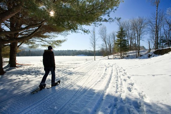 Best Vermont cross country ski trails near Rabbit Hill Inn