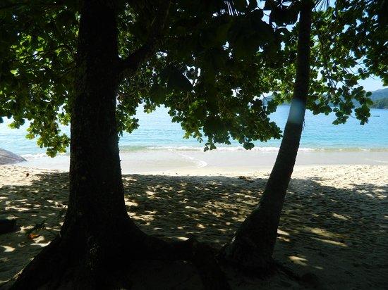 Cabanas Paraiso: Vista da Cabana, Praia Brava de Palmas