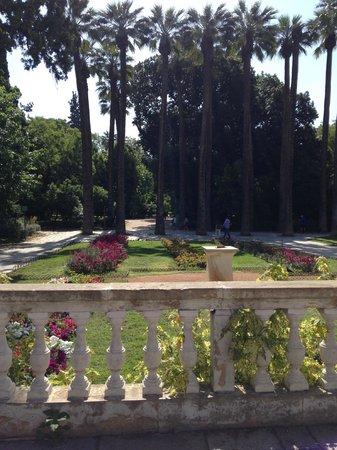 Athens Walking Tours : National Gardens