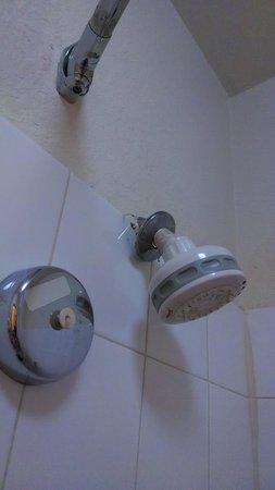 Comfort Inn & Suites At Talavi: Shower head