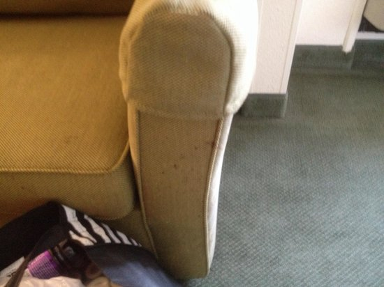 Extended Stay America - Detroit - Ann Arbor - University South: How do you get spots and dirt all over the couch??
