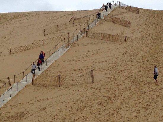 Dune du Pilat : 階段か、直に登るか選びます