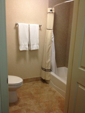 Best Western San Dimas Hotel & Suites: large shower, very clean!