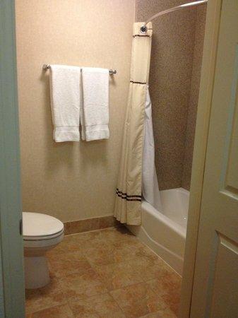 Best Western San Dimas Hotel & Suites : large shower, very clean!