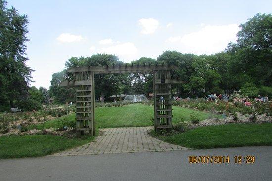 Whetstone Park / Park of Roses: Center of the park of roses