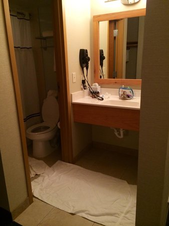 Schlitterbahn Beach Resort: Little bathroom