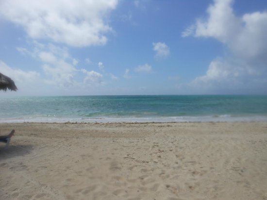 Viva Wyndham Fortuna Beach : on the beach