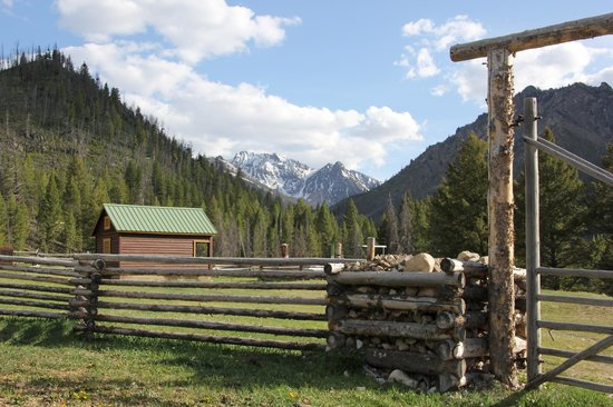 Diamond D Ranch: the Ranch