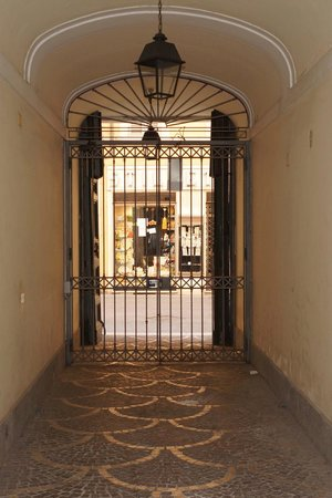 Residenza Frattina : Entrance Gate