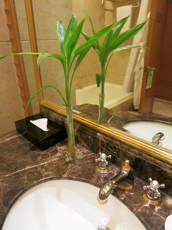 Radisson Blu Plaza Xingguo Hotel Shanghai: 浴室內綠色植物