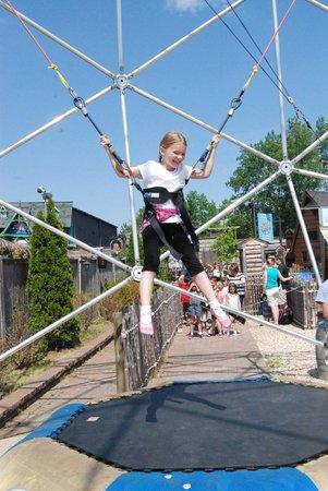 Bayville Adventure Park: Bungee bounce