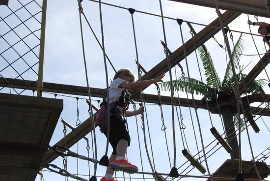 Bayville Adventure Park: Tree Top Adventure