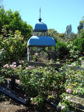 Kahikatea Gardens: There are many interesting objects in the garden!