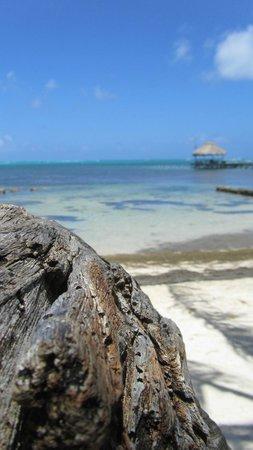Coral Bay Villas: dock