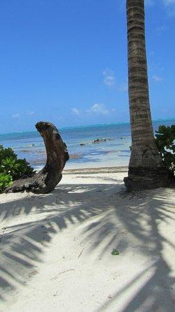 Coral Bay Villas : beach access