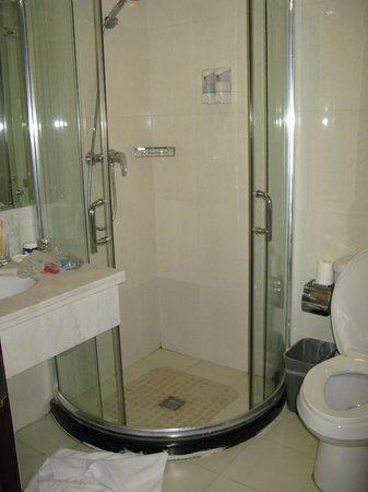 King Parkview Hotel: Туалет