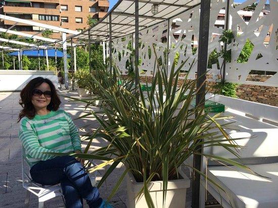 Silken Puerta America: taman didepan hotel