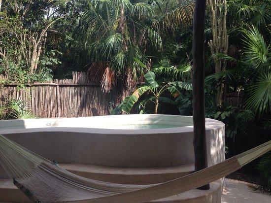 Viceroy Riviera Maya: Plunge pool & hammock with good sun