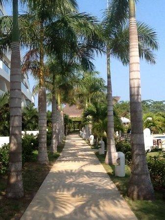 Estelar Playa Manzanillo: lovely resort