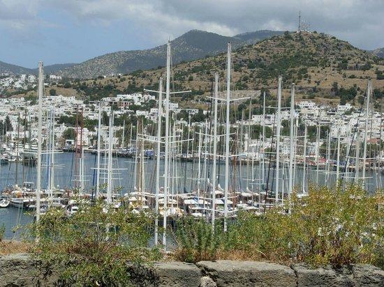 Labranda TMT Bodrum Resort : Яхты с вершины крепости....