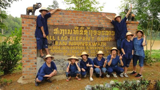All Lao Elephant Camp - Day Tours: Prepare Mahout Training