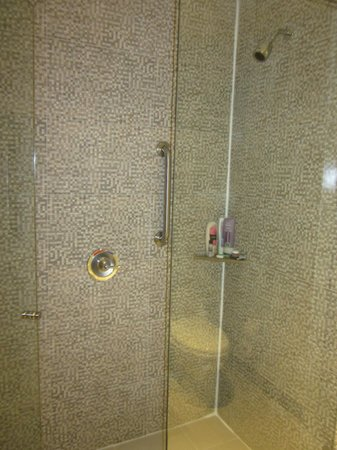 Hampton by Hilton Cartagena : Our shower
