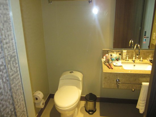 Hampton by Hilton Cartagena : Our bathroom